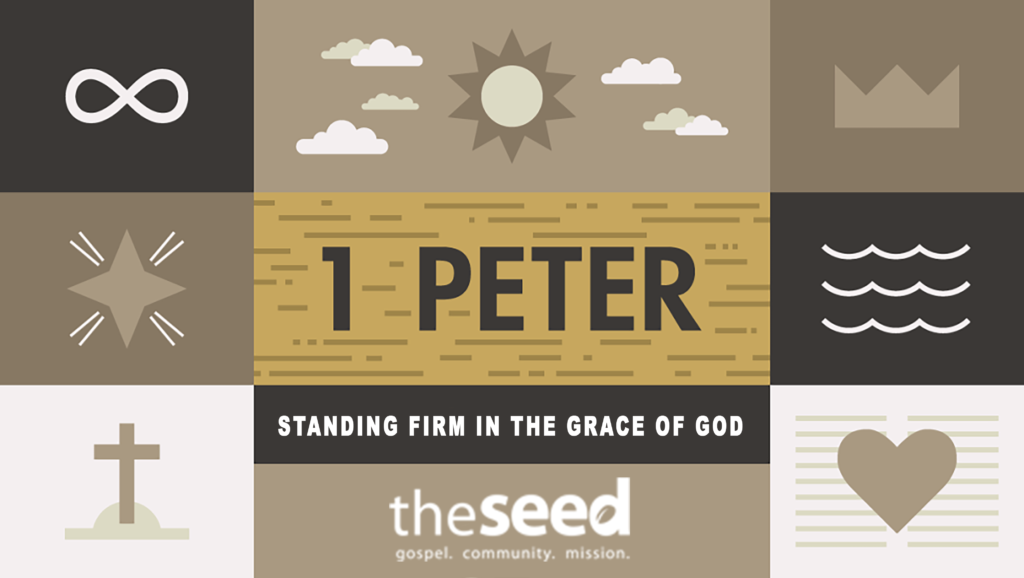 A Stubborn Hope - The Seed Church